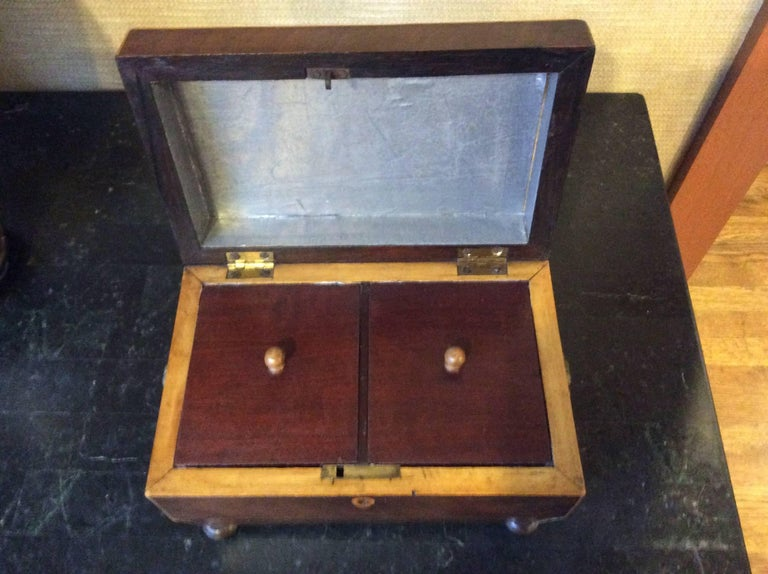 19th Century Tea Caddy with Brass Handles For Sale 1