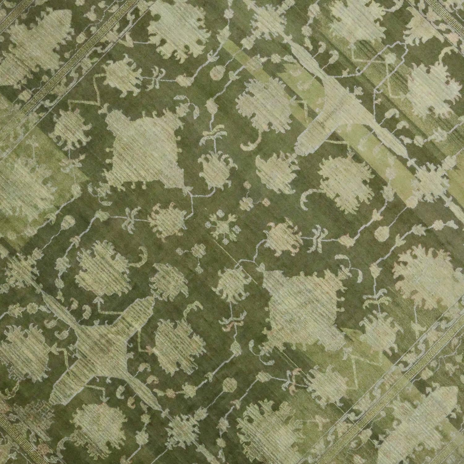 Green Transitional Area Rug