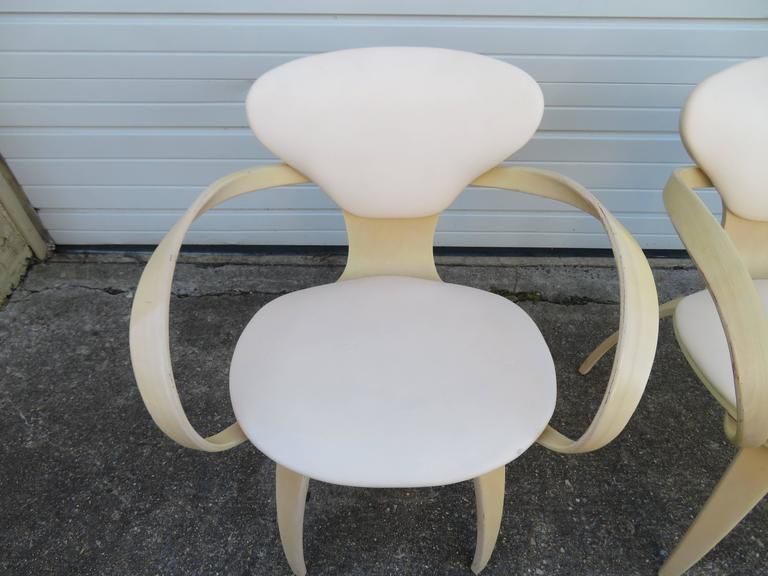 Lovely Pair of Norman Cherner Plycraft Pretzel Chairs, Mid-Century Modern For Sale 3