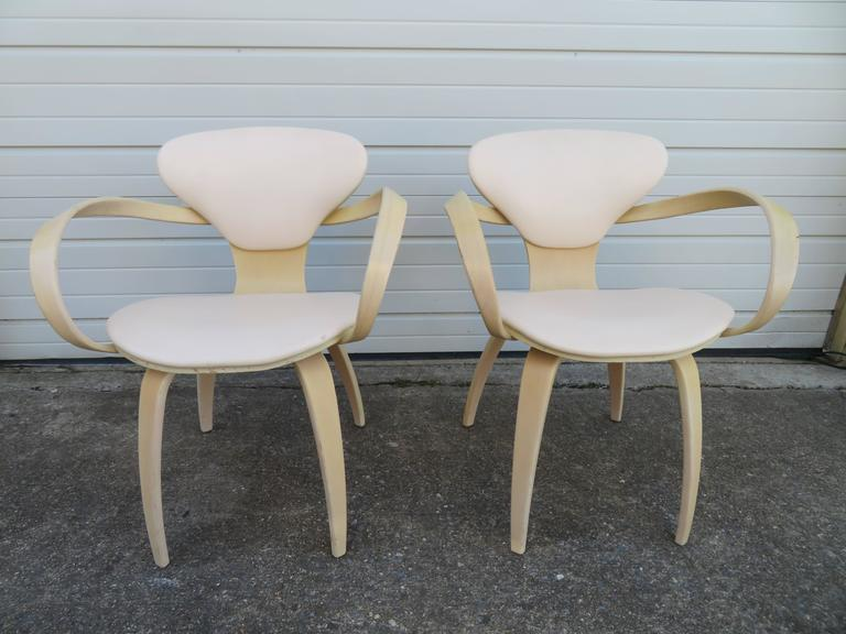 Lovely Pair of Norman Cherner Plycraft Pretzel Chairs, Mid-Century Modern For Sale 4