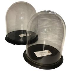 Two Glass Displays Domes Cloche