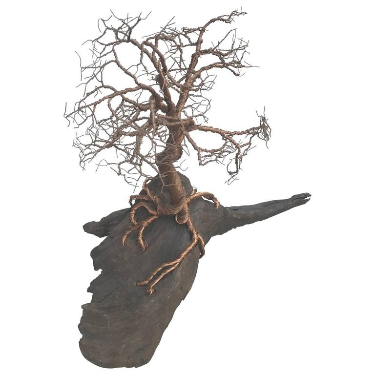 Gilded steel or copper wire sculpture on a large driftwood base by Mauricio Santelice.