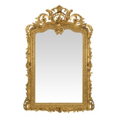 French 19th Century Regence Style Giltwood Mirror