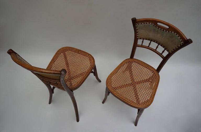 Great Set of 48 Chairs, circa 1900 6