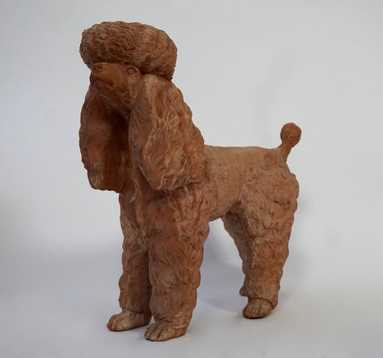 20th Century Terra Cotta Poodle Poodle Dog Sculpture For Sale