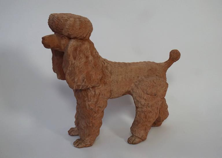 Mid-20th century charming poodle dog, Italian fabrication in terra cotta, circa 1950. Measures: Height 48 cm. Width 52 cm. Depth 22 cm.