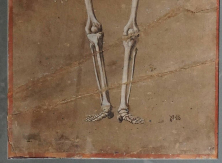 Spectacular and Rare Pair of Watercolor Paintings Representing a Skeleton In Good Condition For Sale In Antwerp, BE