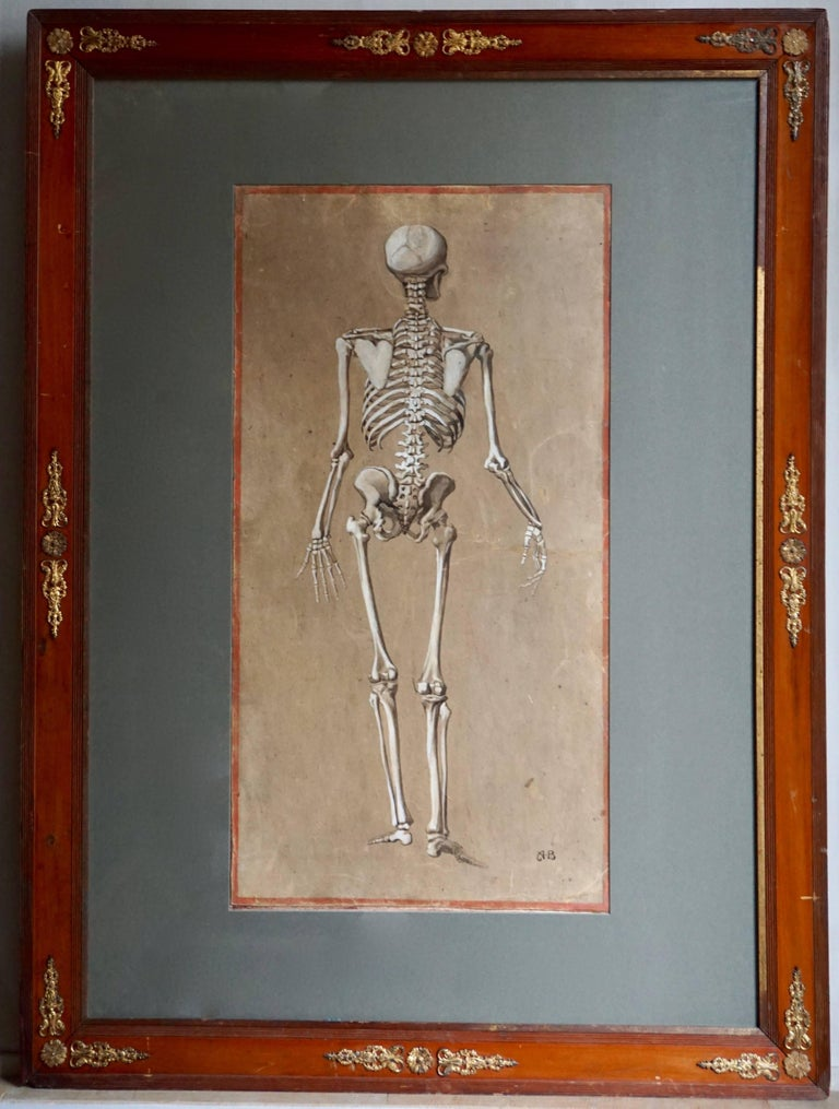 Greek Revival Spectacular and Rare Pair of Watercolor Paintings Representing a Skeleton For Sale
