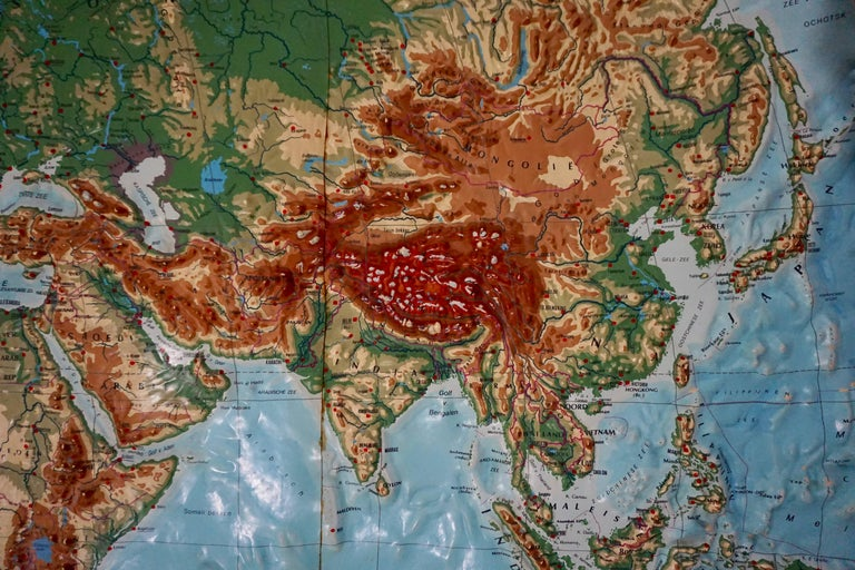 World Relief Map For Sale 2