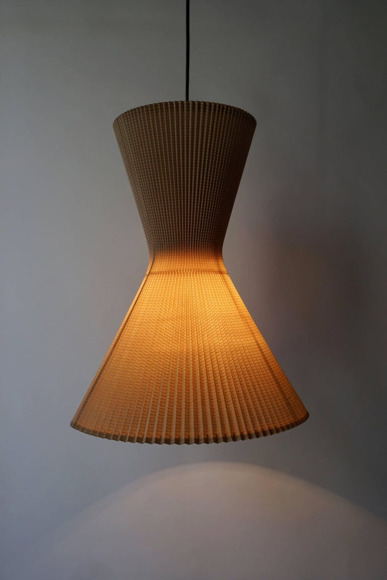 Mid-Century Modern Two Pendant Lights For Sale