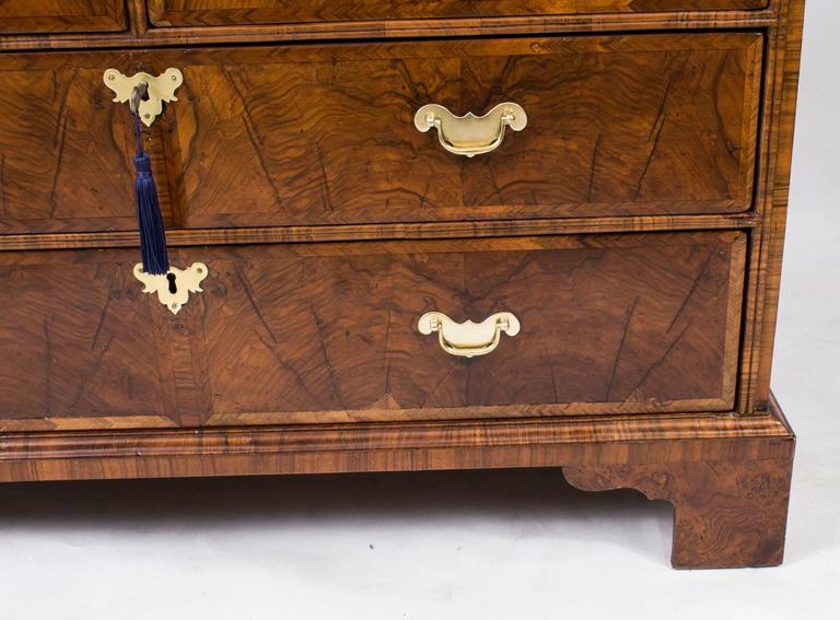 18th Century Queen Anne Double Dome Burr Walnut Bureau Bookcase For Sale 2