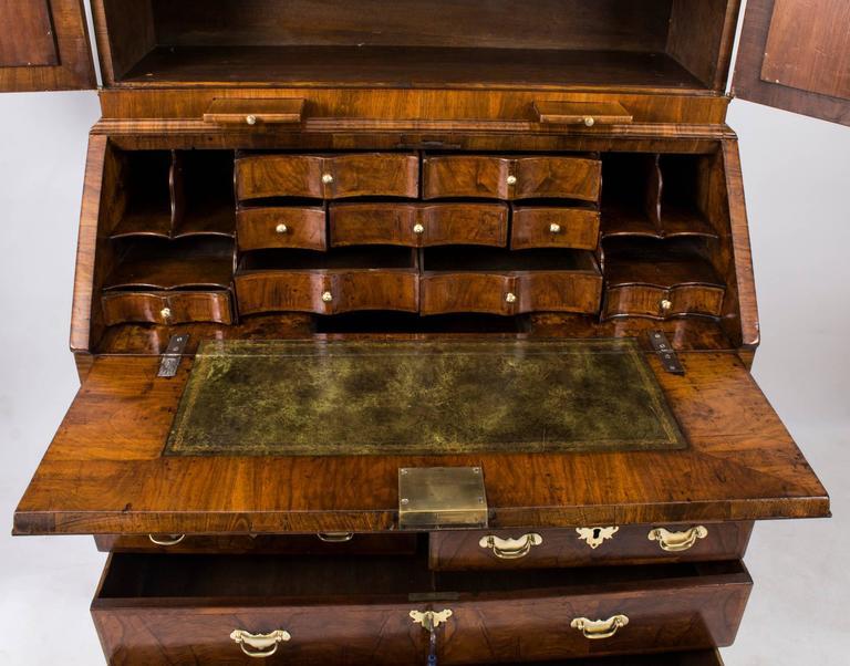18th Century Queen Anne Double Dome Burr Walnut Bureau Bookcase For Sale 6
