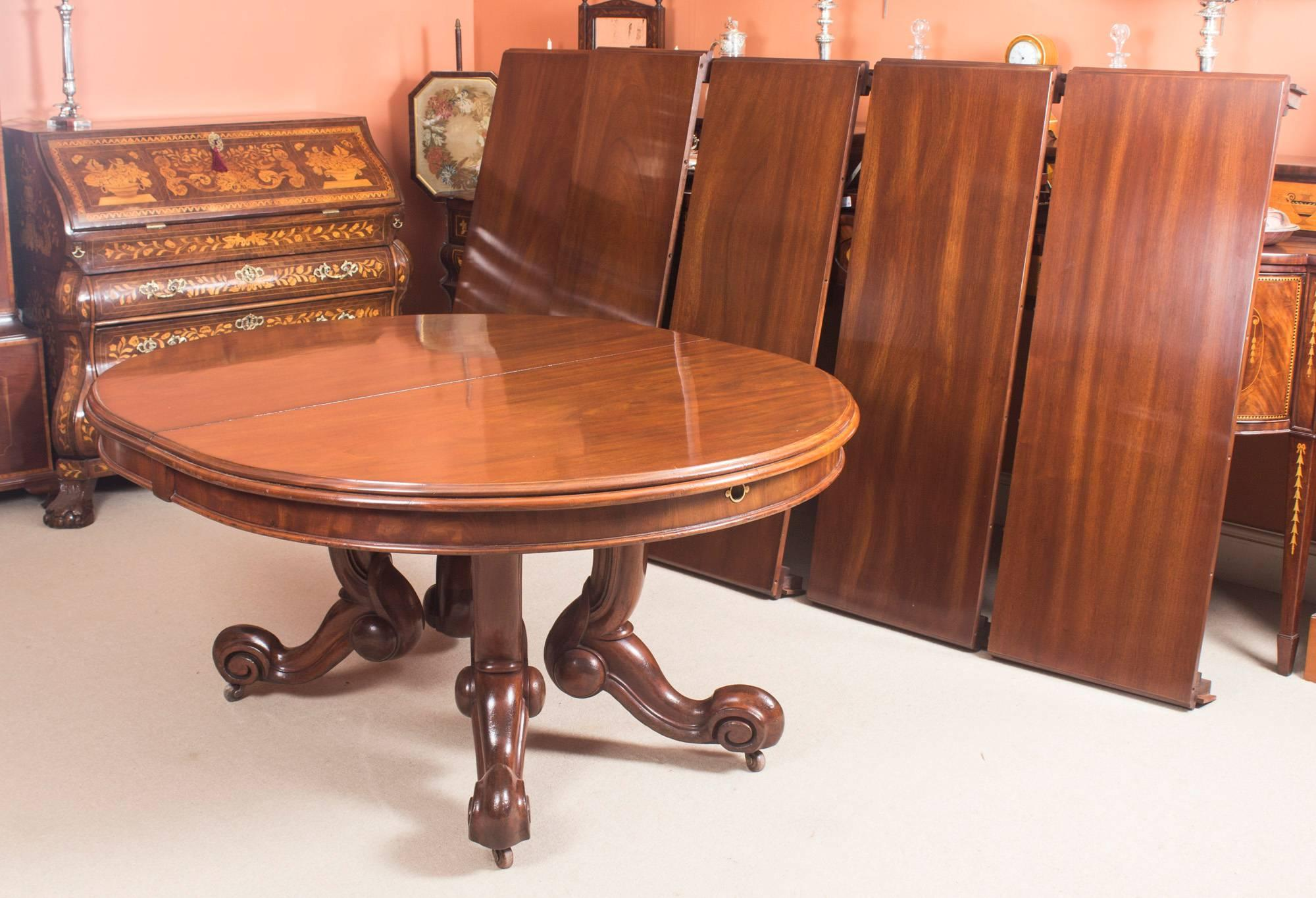 Antique Victorian Mahogany Twin Base Dining Table 19th Century And 14 Chairs  At 1stdibs