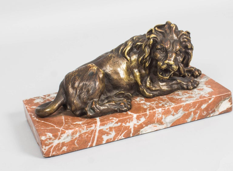 Late 19th Century Antique Pair of Grand Tour Bronze Lions on Marble Bases 19th Century For Sale