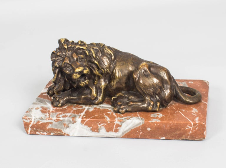Antique Pair of Grand Tour Bronze Lions on Marble Bases 19th Century For Sale 4
