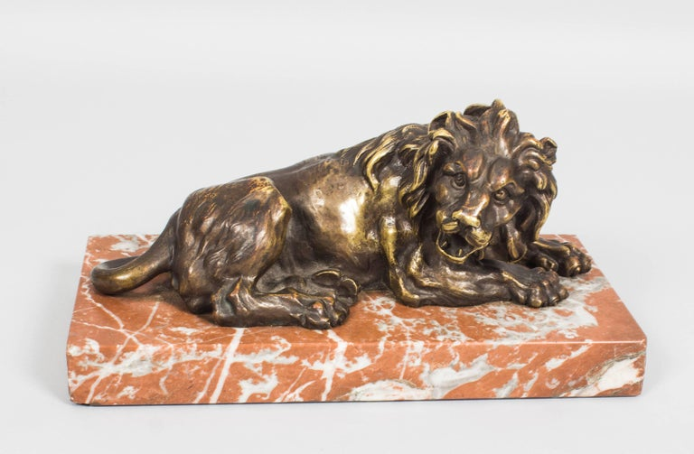 Antique Pair of Grand Tour Bronze Lions on Marble Bases 19th Century In Excellent Condition For Sale In London, GB