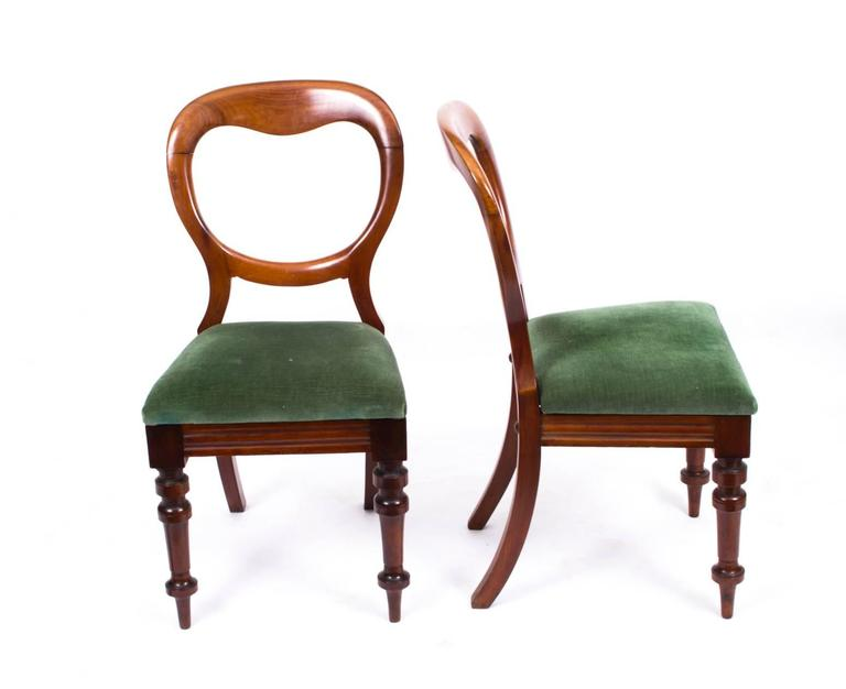 A superb set of ten antique Victorian mahogany dining chairs, circa 1880 in  date. - Antique Set Of Ten Victorian Balloon Back Dining Chairs, Circa