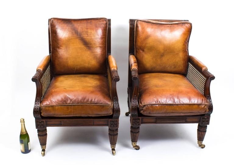 Pair of Regency Style Mahogany Bergere Armchairs For Sale 4
