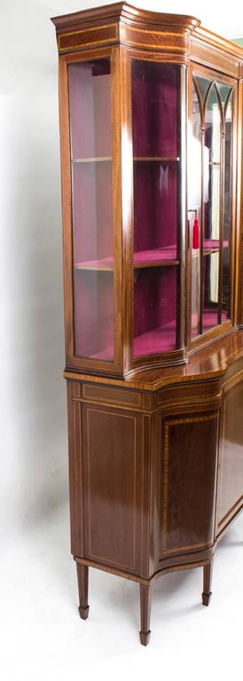 Early 20th Century Edwardian Serpentine Inlaid Display Cabinet For Sale 2