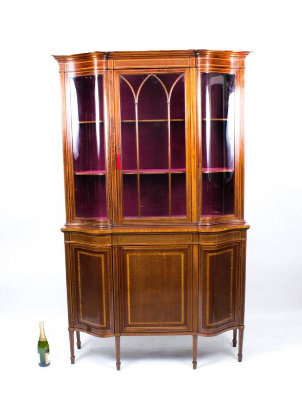 Early 20th Century Edwardian Serpentine Inlaid Display Cabinet For Sale 4