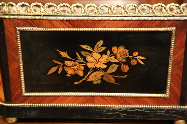 19th Century French Napoleon III Rosewood Marquetry Inlay and Bronze Jardinière For Sale 3
