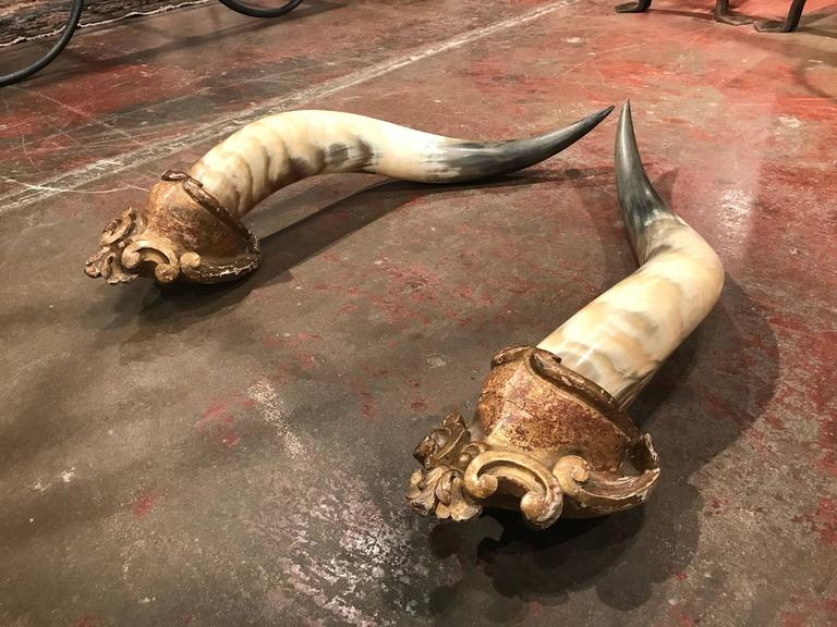 Put a rustic spin on any room in your ranch house with this large pair of antique mounted cornucopia horns. Each of the black and white, curling horns is set on a hand carved mount embellished by the original gold leafing. Crafted in France circa