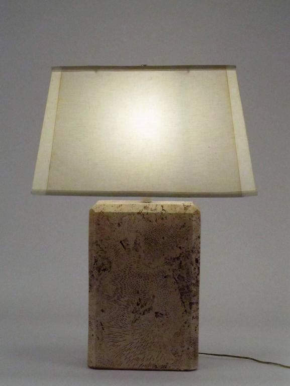 Monumental Fossilized Coral Table Lamp 4