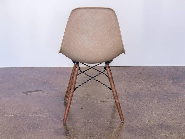 Mid-20th Century Eames Fiberglass Greige Shell Chair on Walnut Dowel Base For Sale