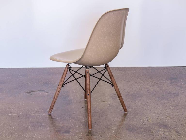 Molded Eames Fiberglass Greige Shell Chair on Walnut Dowel Base For Sale