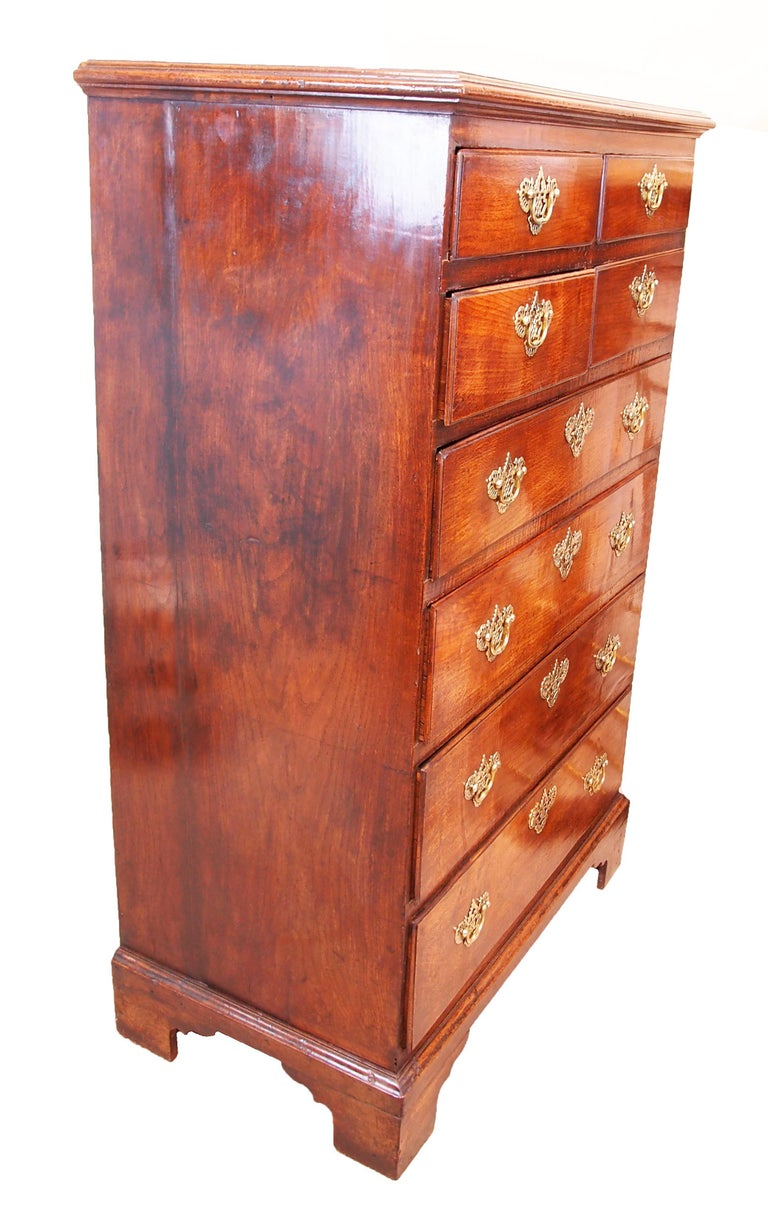 English Antique Tall Georgian Oak Chest Of Drawers For