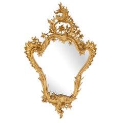 19th Century Italian Rococo Style Mirror in Giltwood