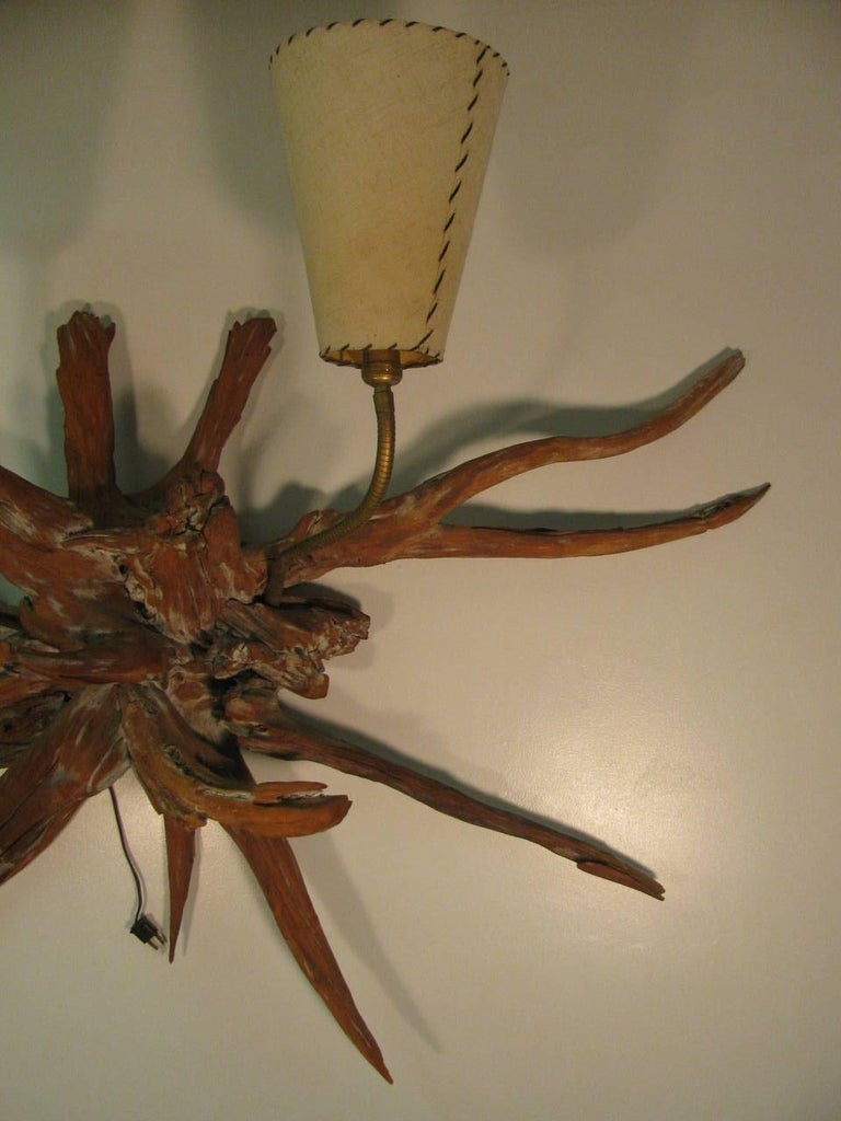 Amazing Pair of Mid-Century Modern Sun Bleached Root Wall Sconces For Sale 2