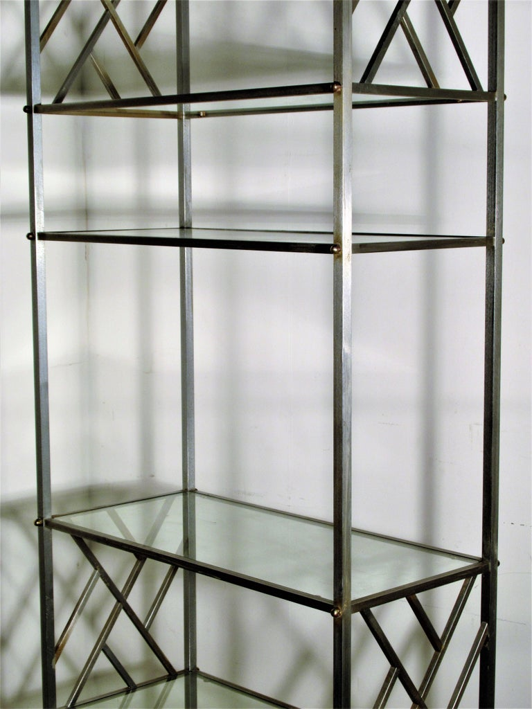 Brass Exotic Neoclassical Brushed Steel and Bronze Étagère Attributed to Maison Jansen For Sale