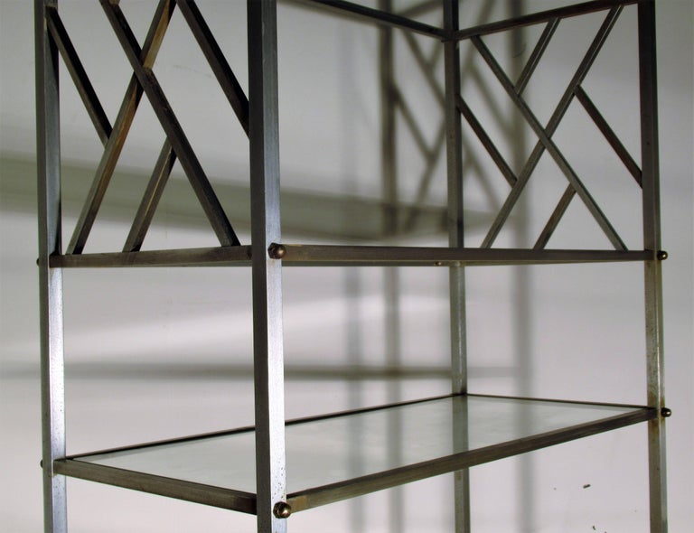 Exotic Neoclassical Brushed Steel and Bronze Étagère Attributed to Maison Jansen For Sale 5
