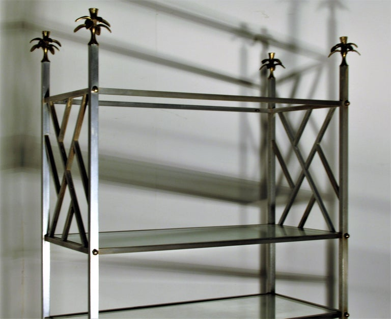 Neoclassical style brushed steel and bronze brass six glass shelf étagère with exotic gilt bronze large palm like finials at four top posts. Attributed to or possibly by Maison Jansen. We believe this is a rare form. It is incredibly beautiful.