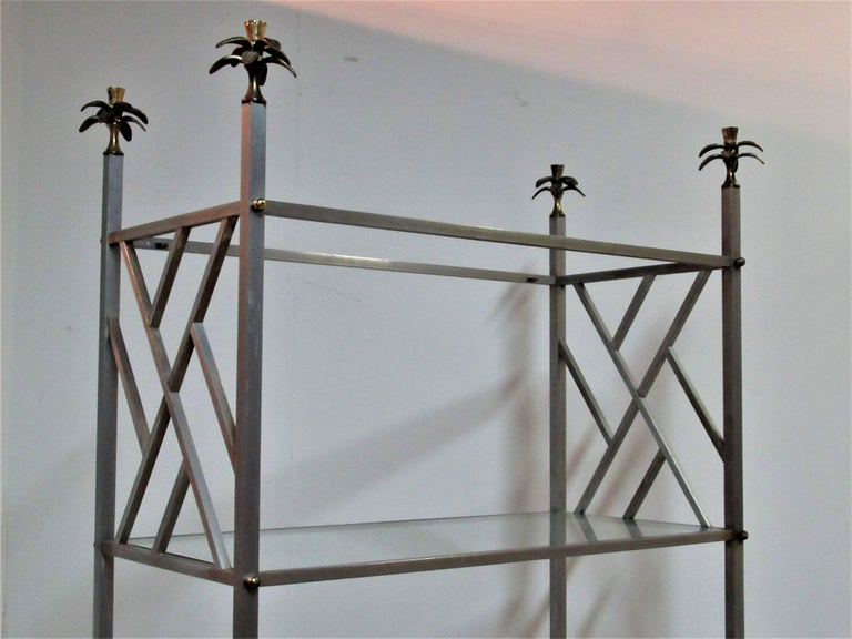 Exotic Neoclassical Brushed Steel and Bronze Étagère Attributed to Maison Jansen For Sale 11