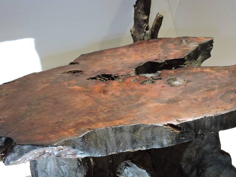 California Redwood Burl Coffee Table