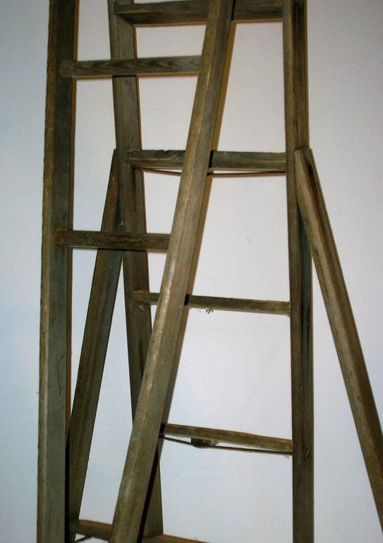 Old Orchard Ladder at 1stdibs
