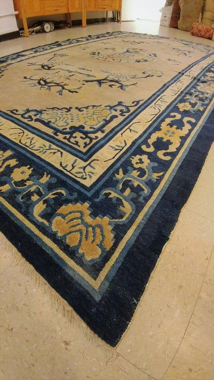 20th Century Antique Chinese Rug, Tan and Blue Oriental Handmade Wool Rug For Sale