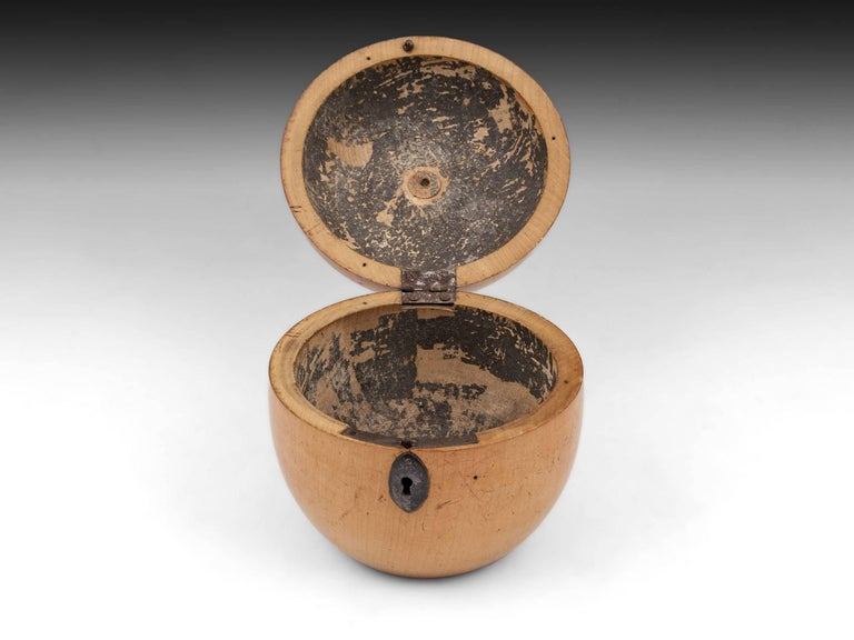 Antique Treen Apple Fruit Tea Caddy with Button Stalk, 19th Century In Excellent Condition For Sale In Northampton, United Kingdom
