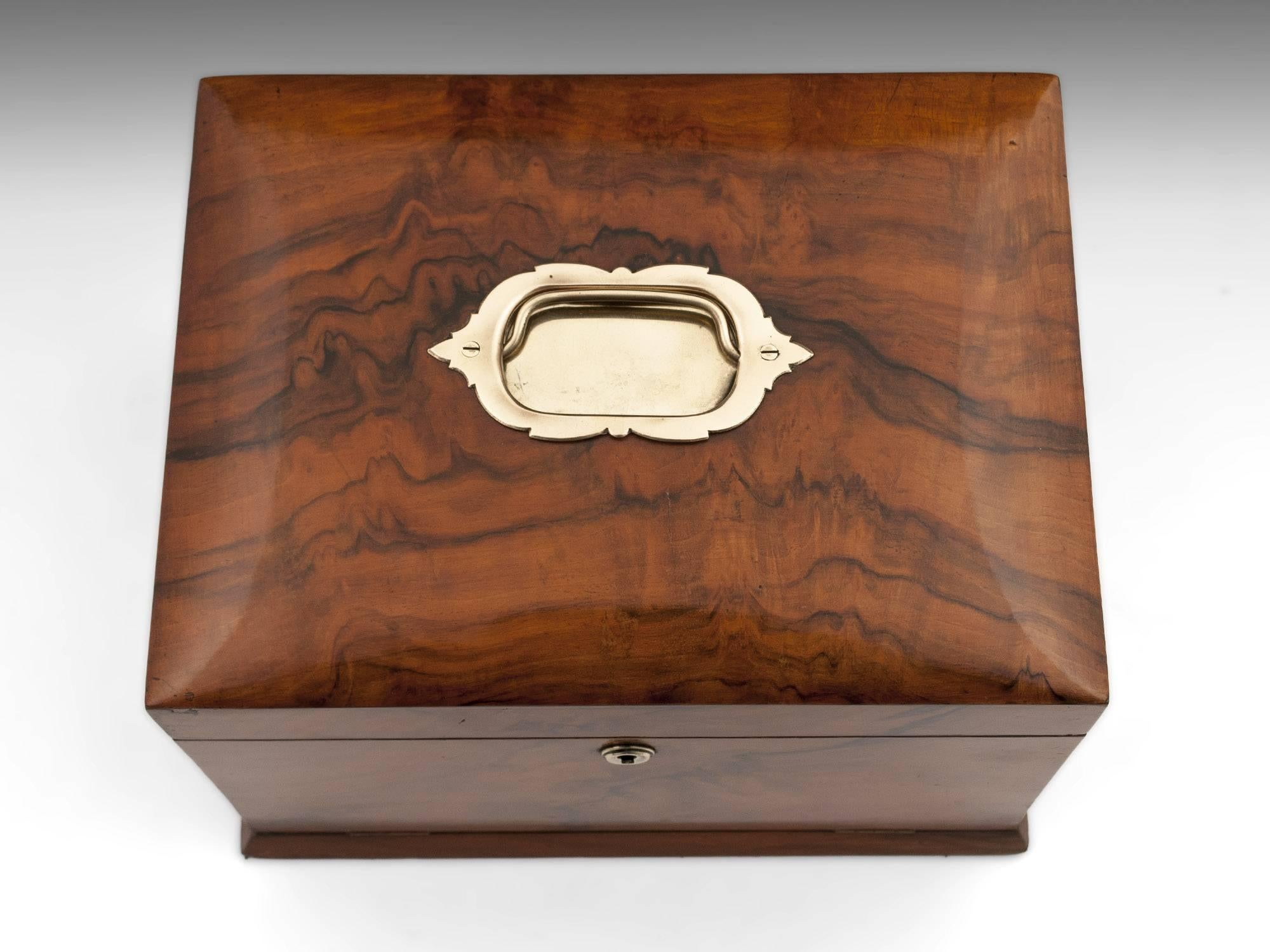 Antique Walnut Jewelry Box with Brass Handle 1900 at 1stdibs