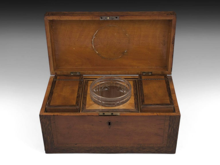Georgian Satinwood Tea Chest with Glass Tea Caddy Bowl, 19th Century In Good Condition For Sale In Northampton, United Kingdom