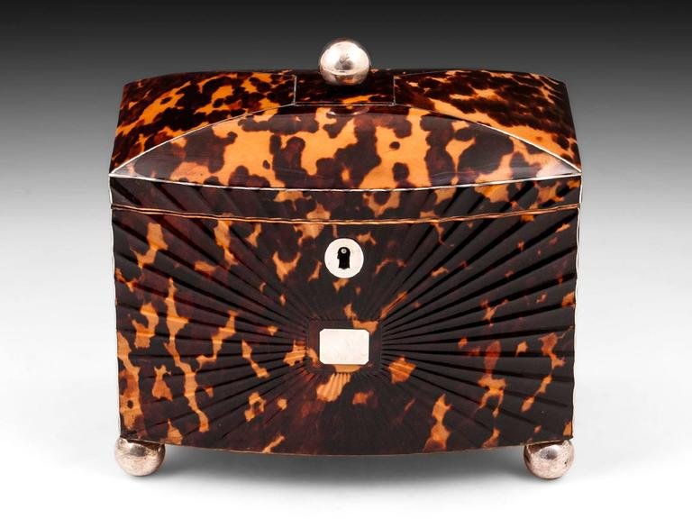 Regency Starburst Tortoiseshell Tea Caddy 2