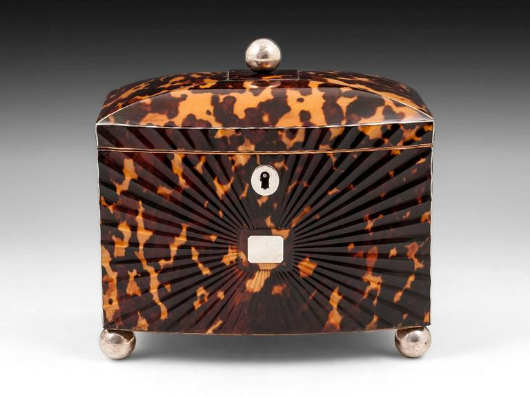 British Regency Starburst Tortoiseshell Tea Caddy For Sale