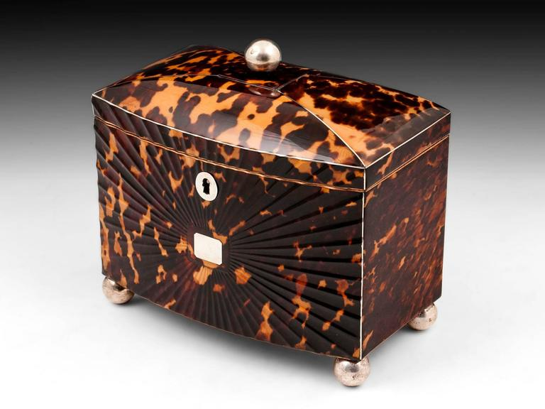 19th Century Regency Starburst Tortoiseshell Tea Caddy For Sale