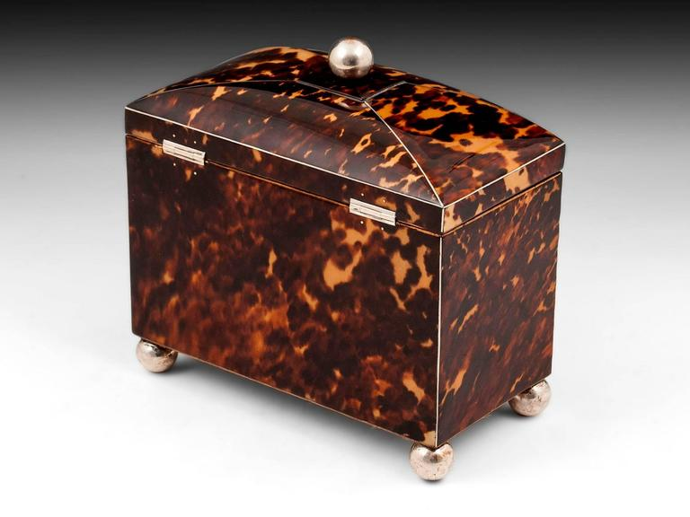 Silver Regency Starburst Tortoiseshell Tea Caddy For Sale