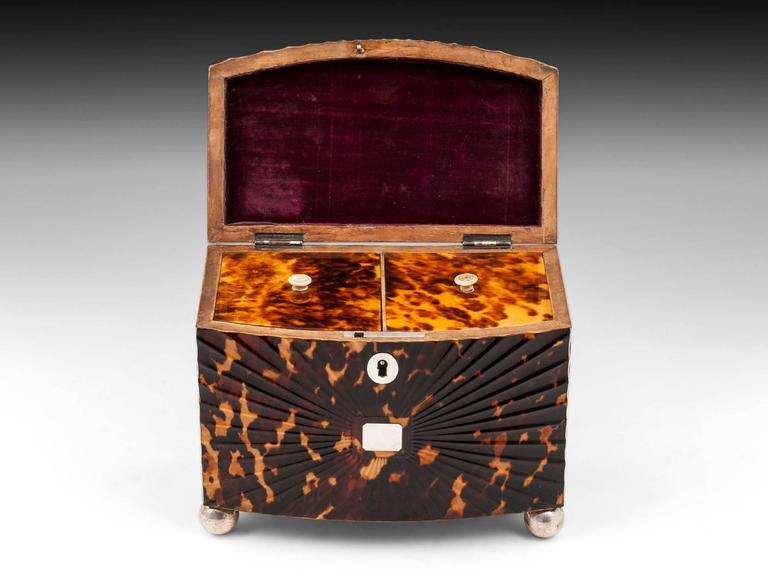 Regency Starburst Tortoiseshell Tea Caddy For Sale 1