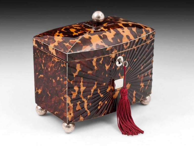 Regency Starburst Tortoiseshell Tea Caddy For Sale 3