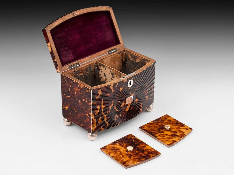 Regency Starburst Tortoiseshell Tea Caddy For Sale 2
