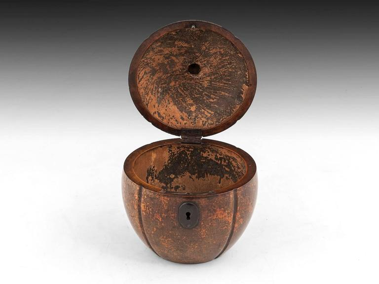 Antique Melon Fruitwood Tea Caddy In Excellent Condition For Sale In Northampton, United Kingdom
